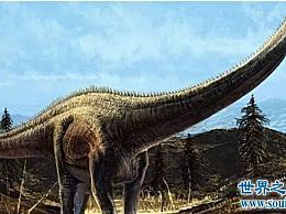 世界上最大的恐龙排名 220吨易碎的双腔龙赢得了第一名