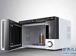 什么牌子的微波炉好?世界十大微波炉品牌