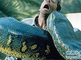 亚马逊巨蟒 地球上最大的巨蛇(村民们亲眼目睹了这条50米长的巨蟒