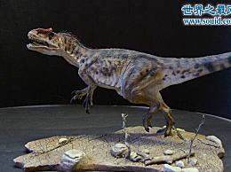 异特龙 智商最高的恐龙 处于食物链的顶端