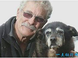 世界上最长寿的狗活了29年 相当于人类活了203年