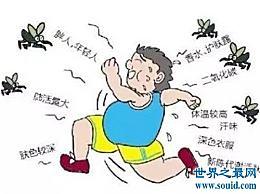蚊子喜欢咬什么样的人?为什么蚊子会咬人