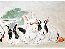 属兔人:警惕感情问题,以免后悔莫及