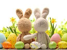 我单身我快活,属兔人是不是习惯了一个人?