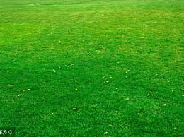 心理测试:选一个宽阔的草原,测你多大年龄才是你的事业巅峰期?