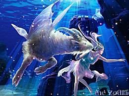 12星座纠缠关系(白羊、金牛、双子、巨蟹、狮子、处女)