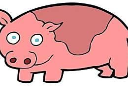 """1971年出(46)岁的劫难,""""生肖猪""""你能度过去吗?"""