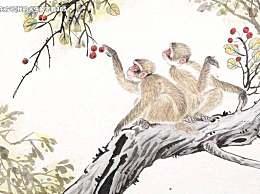 最狡猾的三个生肖,总是把别人当作猴耍,有你吗?
