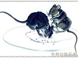 1996年生肖鼠 7月四大运势详解!